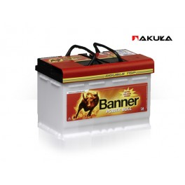 Banner Power Bull Professional 100Ah